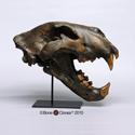 American Lion Skull Tarpit Finish BC-019T