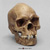 Human Male Australian Aboriginal Skull Painted