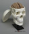 Human Calvarium Cut Skull with Brain and Stand