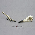Roadrunner Skull and Foot set