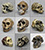 Set of 9 Fossil Hominid Skulls
