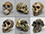 Fossil Hominid Skull Set of 6
