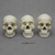 Human Male Skulls: African, Asian, and European COMP-121-SET