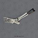 Ankle Sprain Model KO-334-AJ