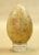 Wild Eastern Turkey Egg