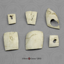Skull Trauma Set of Six Fragments KOM-804-SET