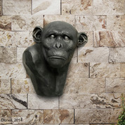 Large-scale Chimpanzee Bust