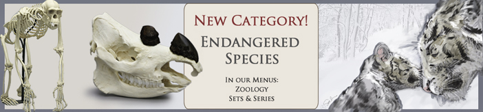 Endangered Species Category