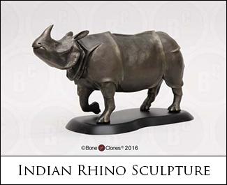 Indian Rhino Sculpture